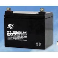 賽特蓄電池BT-HSE-31-12防震耐腐蝕12V-31AH
