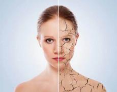 面部干細胞生物療法  干細胞激活美容