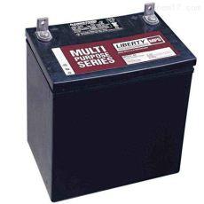 西恩迪蓄電池CD12-100免維護鉛酸12V100AH