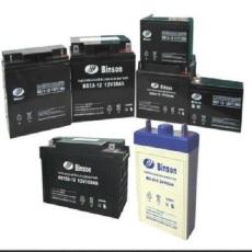 BINSON蓄電池電池全系列穩壓UPS消防