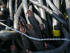 盘锦电缆回收盘锦本地电缆价格咨询电缆回收