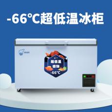 超低溫冰柜零下-66度冰柜  可定制