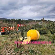 農業產業園標識玻璃鋼橘子雕塑定制生產廠家