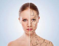 桐儷時光干細胞 肌膚干細胞美容再生療法