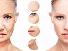 肌膚干細胞美容再生療    桐儷時光干細胞