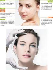 桐儷時光干細胞   肌膚干細胞美容再生療