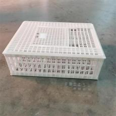 批發東北養雞成雞運輸籠 塑料雞籠 拉鴨筐子