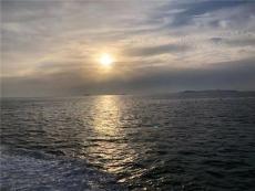 上海租游艇 游艇駕駛體驗 游艇出海 海釣