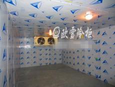 在東莞做一個凍庫找誰做