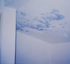 閬中陽光房防水閬中房頂做防水品質一流