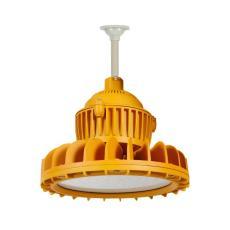 DL607LED多用途防爆燈40W圓形泛光燈U型支架