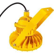 DL607LED多用途防爆燈60W/50W加油站燈具
