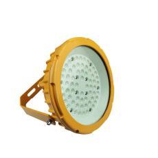 DL607LED多用途防爆燈50W鼎軒照明