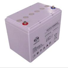 雙登蓄電池 12V65AH 雙登蓄電池6-GFM-65