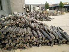 肇慶市封開工廠剩余電纜回收免費評估